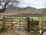 Farm gate - a days work